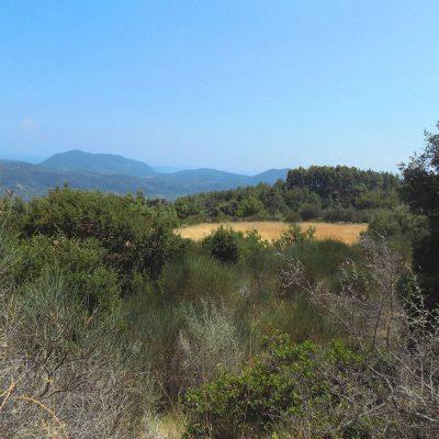 Plot near Agios Petros, Lefkada.